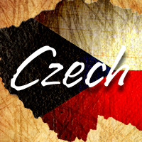 Czech Info Meeting
